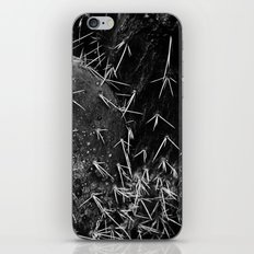 Cactus #3 iPhone & iPod Skin