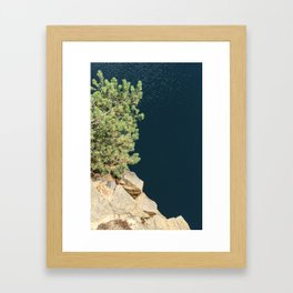 Tree And Rock And Water Framed Art Print