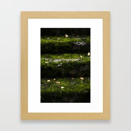 Mossy steps Framed Art Print