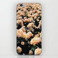 vienna iPhone & iPod Skins featuring Vienna by Bailey Friedman