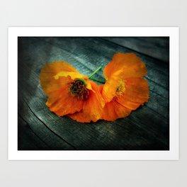 Twin Flowers Art Print
