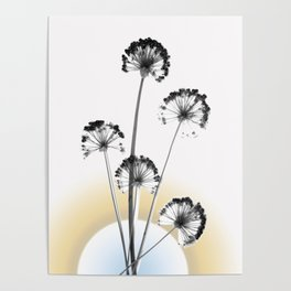 black and white flower wallpaper and the sun, flower decor, printable art Poster