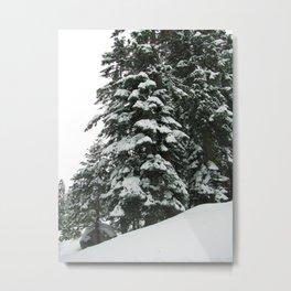 Tahoe 0372 Metal Print