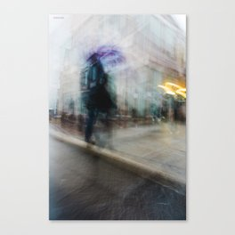 - Alter ego - Canvas Print