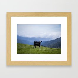 Mama and her baby calf. Framed Art Print