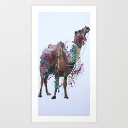 Arabian Camel Art Print