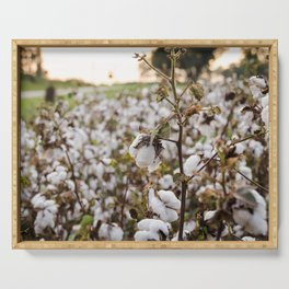 Cotton Field 3 Serving Tray