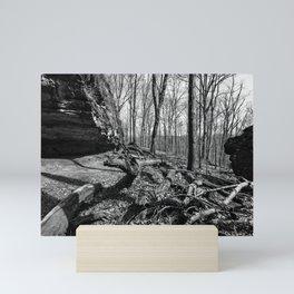 messy woods Mini Art Print