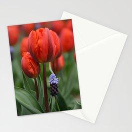 We Belong Together, Holland Tulips by Karen Images Stationery Cards