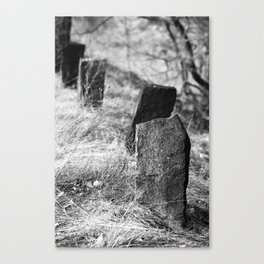 The old way Canvas Print