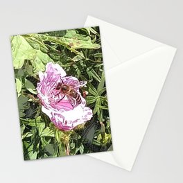 Life of Bee Stationery Cards