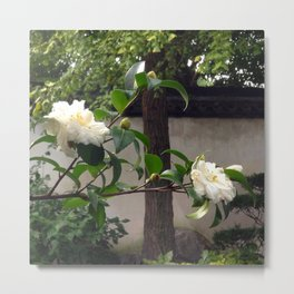 White Flowers in the Garden of the Summer Palace, Beijing Metal Print