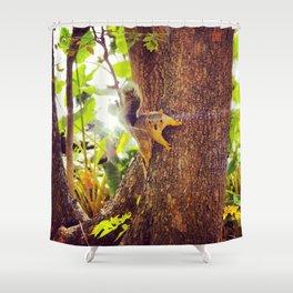 Super Squirrel Shower Curtain