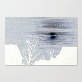 Moon Over Suburbia Canvas Print