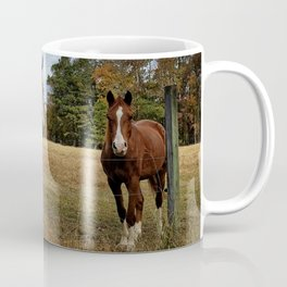 Two Horse Amigos in Pasture Coffee Mug