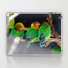 Agapornis Fischeri Laptop & iPad Skin