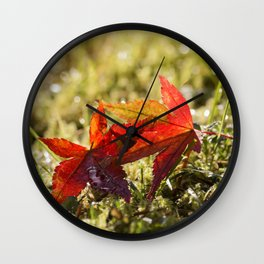 Indian Summer II Red marple leaves in wet grass at backlight Wall Clock
