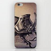 beetle iPhone & iPod Skins featuring Beetle by Werk of Art