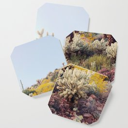 Arizona Color Coaster