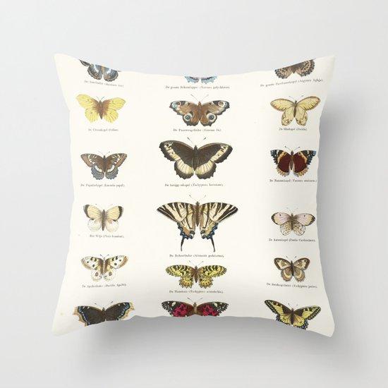 Vintage Butterfly Chart by fineearthprints