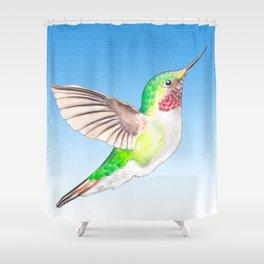 Little Hummer Shower Curtain