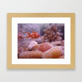 Fresco Framed Art Print