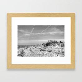 Beach Shrub Framed Art Print