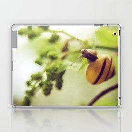 little snail Laptop & iPad Skin