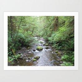 mossy stream Art Print