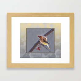 Cedar Waxwing With Berry Framed Art Print