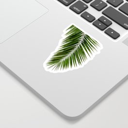Palm Leaf I Sticker