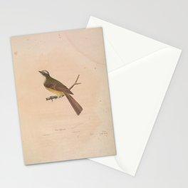 JP Giroud - A description of sixteen new species of North American birds (1841) - Texan Flycatcher Stationery Cards
