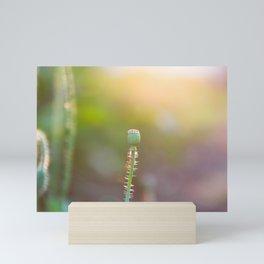 Next Season's Poppy Mini Art Print