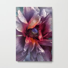 Abstract poppy(2). Metal Print
