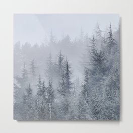 Early moorning... Into the foggy woods Metal Print