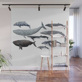 Whales and right whale Wall Mural