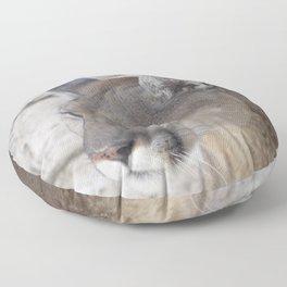 Focused Feline Floor Pillow
