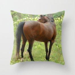 Beautiful Mare Throw Pillow