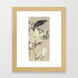 Myna on Magnolia Branch, Ohara Koson, 1900 Framed Art Print
