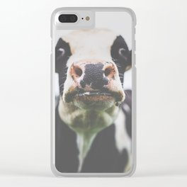 Funny Cow Photography print Clear iPhone Case