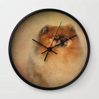 pomeranian Wall Clocks featuring Proud Pomeranian by Jai Johnson