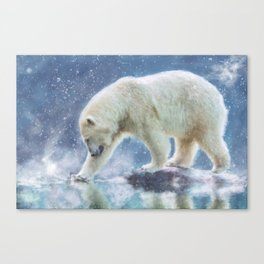A polar bear at the water Canvas Print