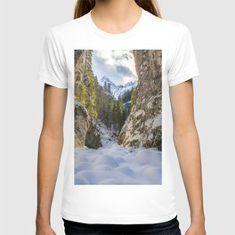 Winter and spring valley and mountains T-shirt