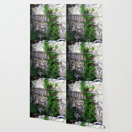 Swiss Barn and Ladder Wallpaper