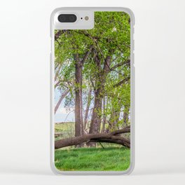 Cottonwoods at Lee's Farm 2 Clear iPhone Case