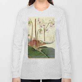 Streptocarpus saundersii 'Cape primrose' 1861 Long Sleeve T-shirt
