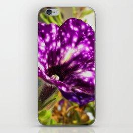 Unic ultra violet petunia flower night sky iPhone Skin