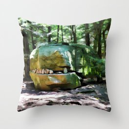Alligator Rock 1 Throw Pillow