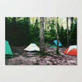 Mosquito Campsite Canvas Print