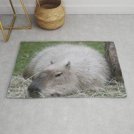 Capybara 215 A Rug